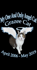 In Loving Memory Of My One And Only Angel Cat Grazee