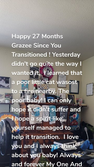 Happy 27 Months Grazee Since You Transitioned ! Yesterday didn't go quite the way I wanted it, I learned that a poor little cat wasost to a fire nearby. The poor baby! I can only hope it didn't suffer and I hope a spirit like yourself managed to help it transition. I love you and I always think about you baby! Always and forever My One And Only Angel Cat!